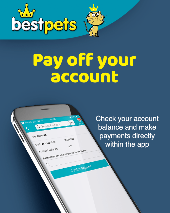 Pay off your account