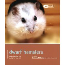 Dwarf Hamster Pet Friendly