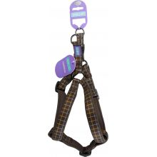 Hemm & Boo Check Harness Brown Small
