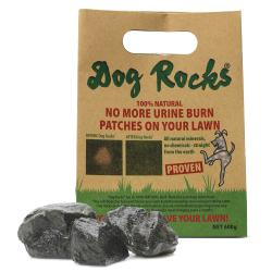 Dog Rocks Igneous Rock