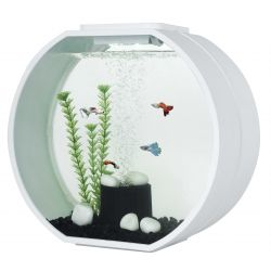 Fish 'R' Fun Deco Aquarium White