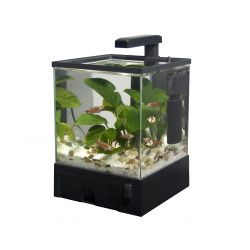 Fish 'R' Fun Aqua Box Aquarium Black