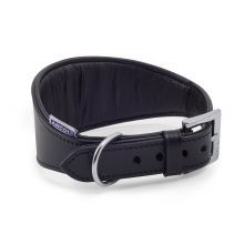 Ancol Greyhound Padded Collar Black