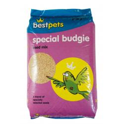 Bestpets Special Budgie