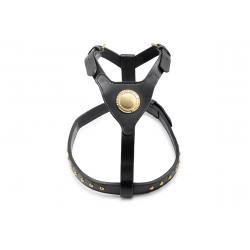 Ancol Bull Terrier Harness Black