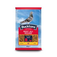 Buckton Pigeon Best All Round
