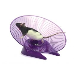 Small 'N' Furry Fly 'N' Saucer Wheel Large