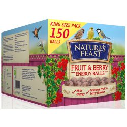 Nature's Feast Energy Balls Fruit & Berry