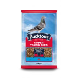 Buckton Super Young Bird