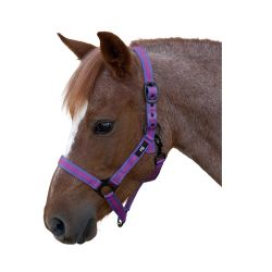 Hy Duo Head Collar - Navy/Light Blue - Cob