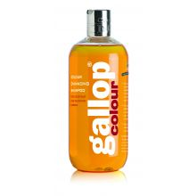 Gallop Colour Enhancing Shampoo - Chestnut & Palomino