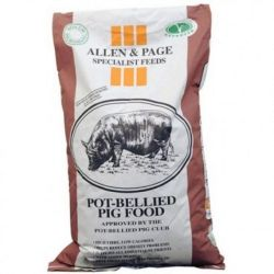 Allen & Page Pot Bellied Pig