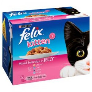 Felix Pouch Kitten Mixed Selection In Jelly