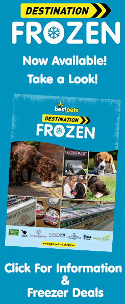 Bestpets Destination Frozen