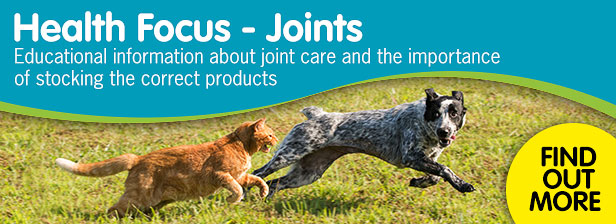 Health focus - joints